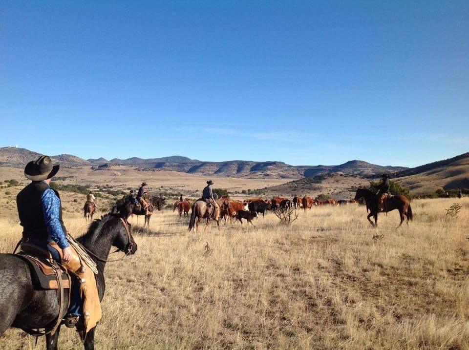 McIvor Ranch