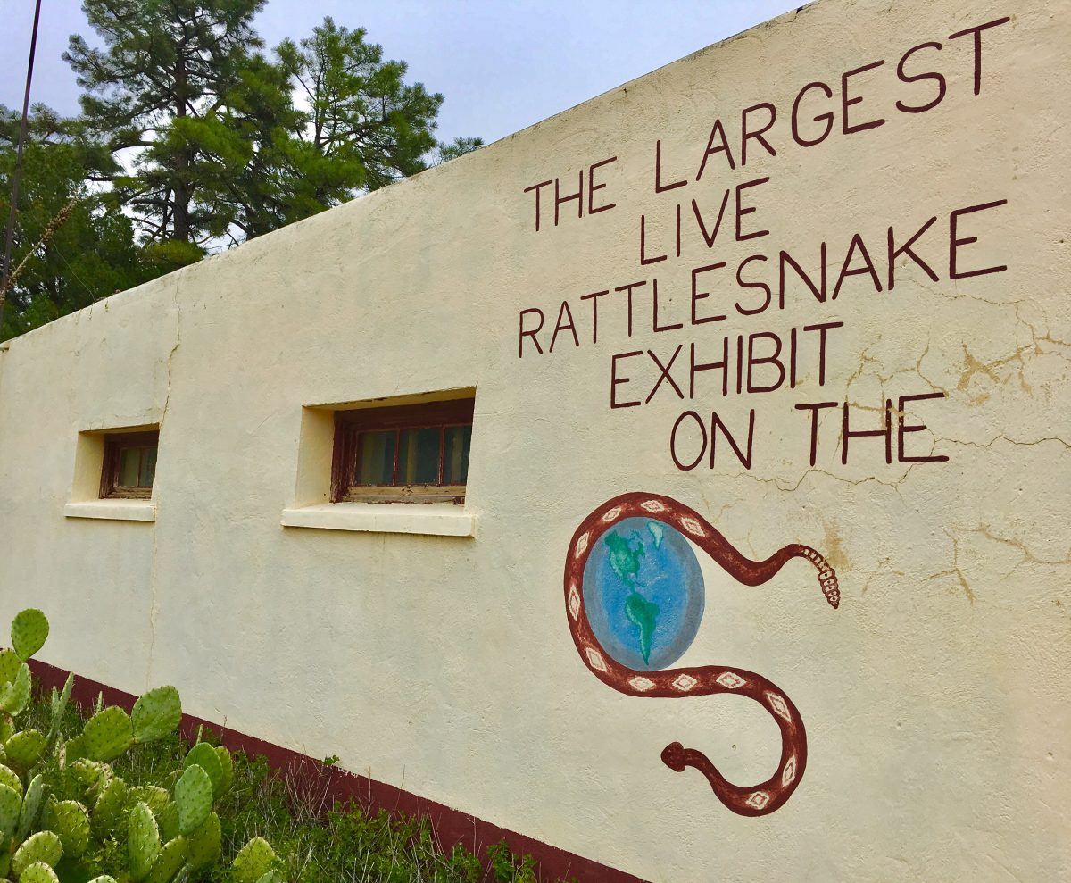 Rattlers & Reptiles